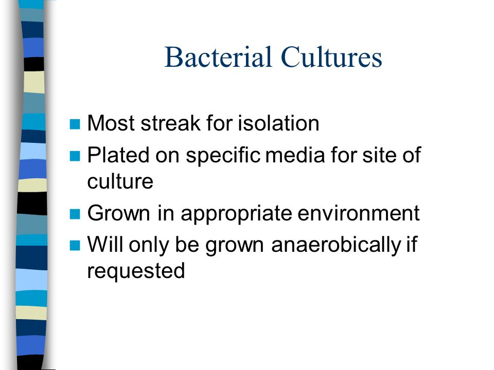 Bacterial Cultures Most streak for isolation