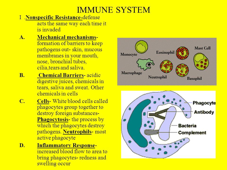 IMMUNE SYSTEM I .Nonspecific Resistance-defense acts the same way each time it is invaded.