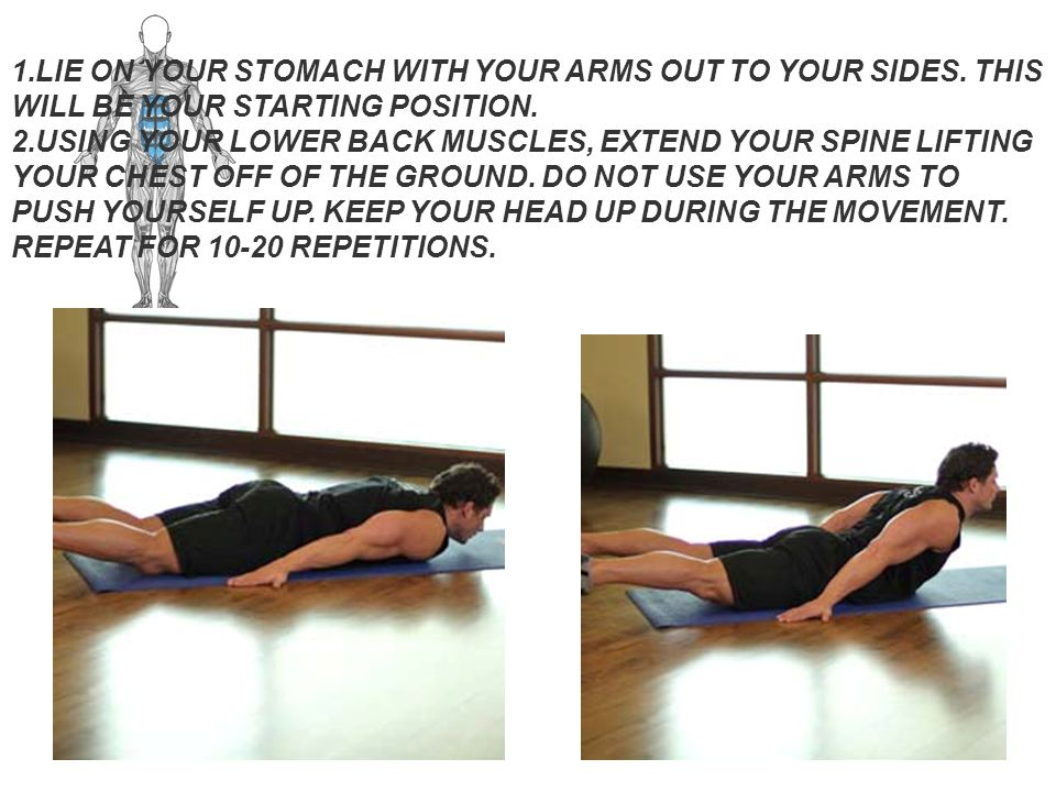 Main Muscle: Abdominals