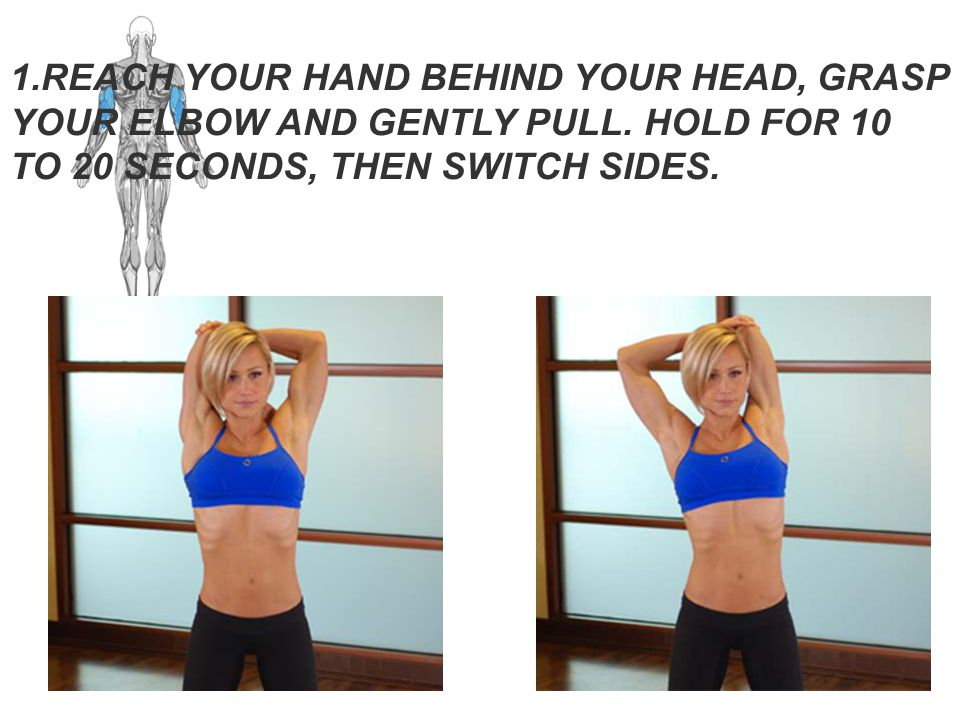 CLICK TO ENLARGE Triceps Stretch Guide. Main Muscle: Triceps. CLICK TO ENLARGE. Click to enlarge.