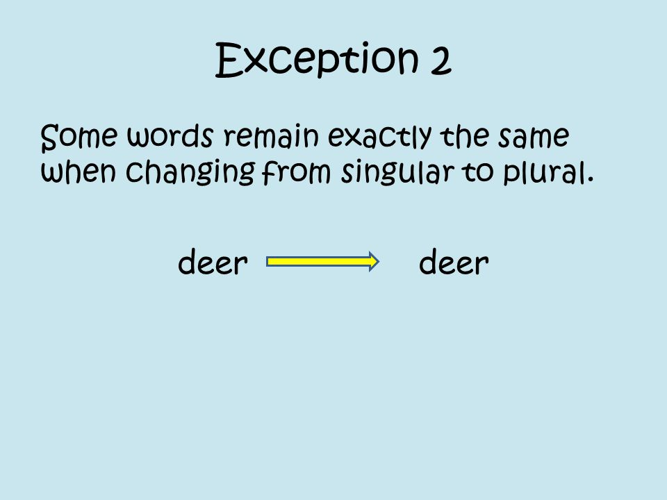 Exception 2 Some words remain exactly the same when changing from singular to plural.