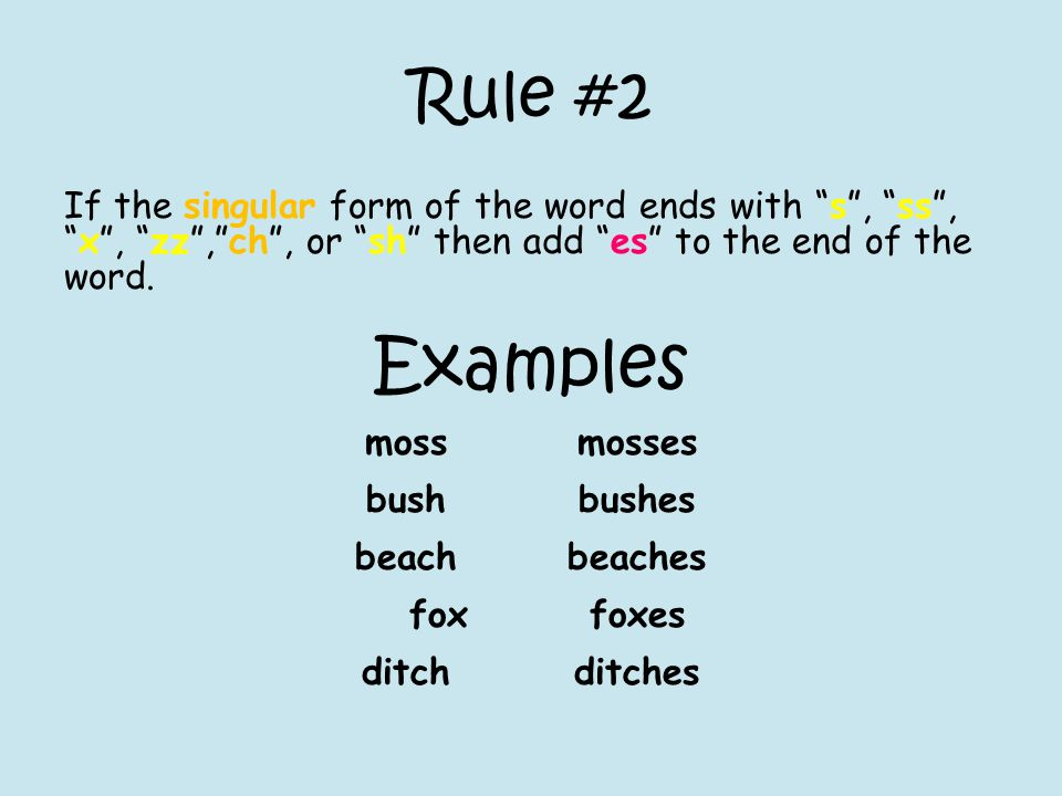 Rule #2 If the singular form of the word ends with s , ss , x , zz , ch , or sh then add es to the end of the word.