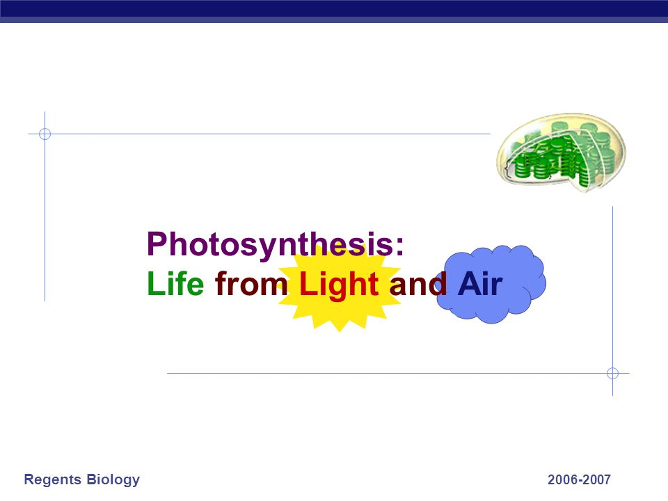 Photosynthesis: Life from Light and Air