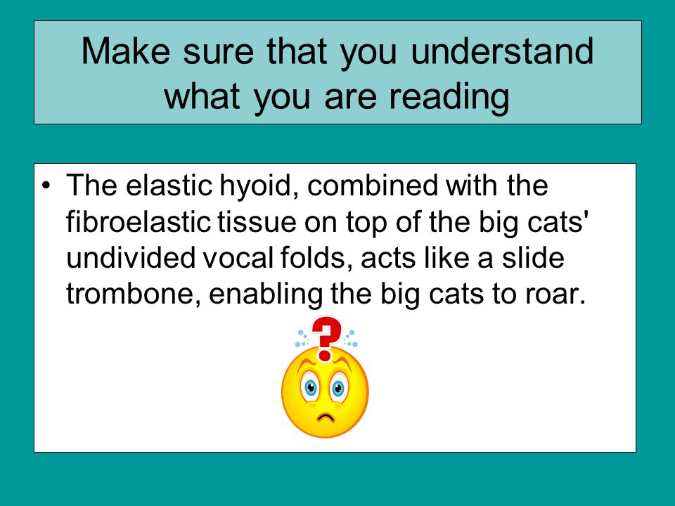 Make sure that you understand what you are reading