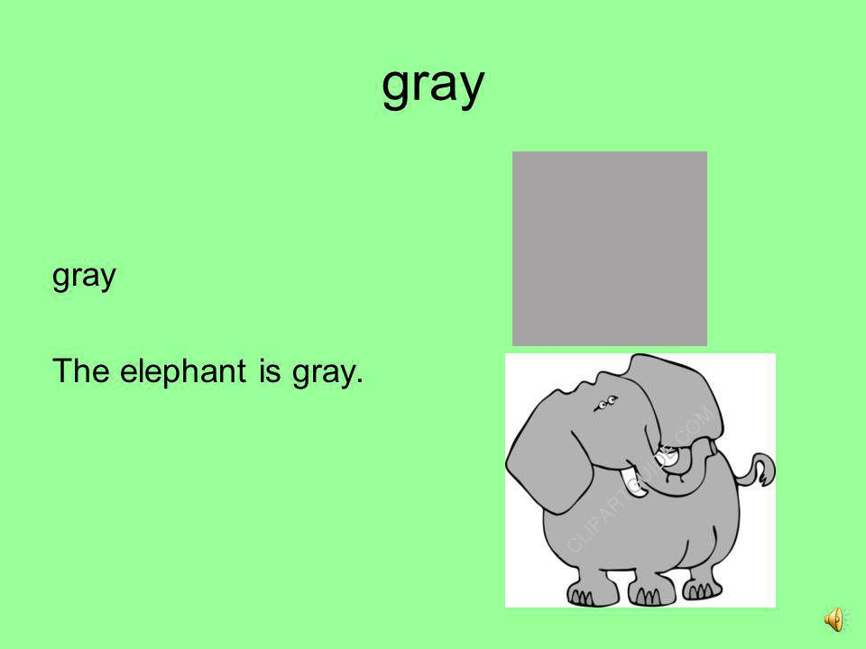 gray gray The elephant is gray.