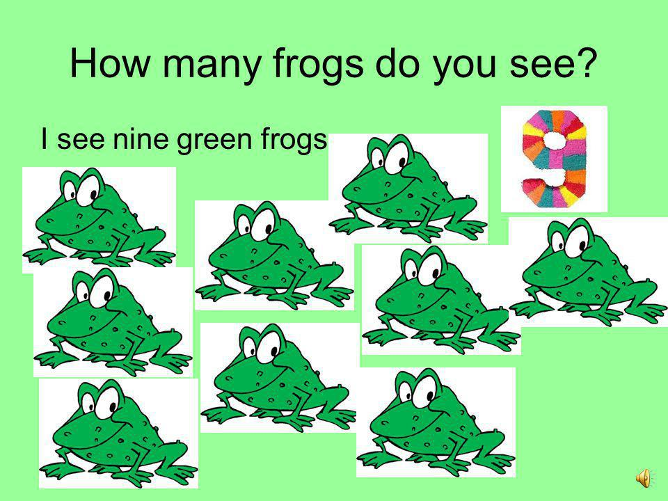 How many frogs do you see