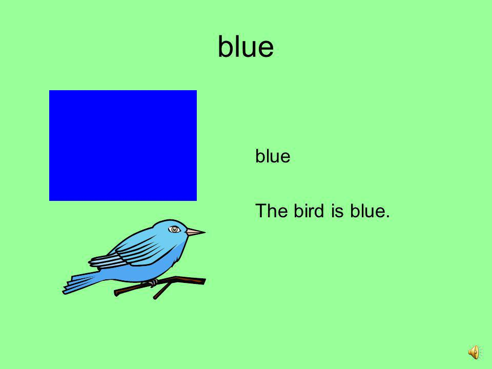 blue blue The bird is blue.