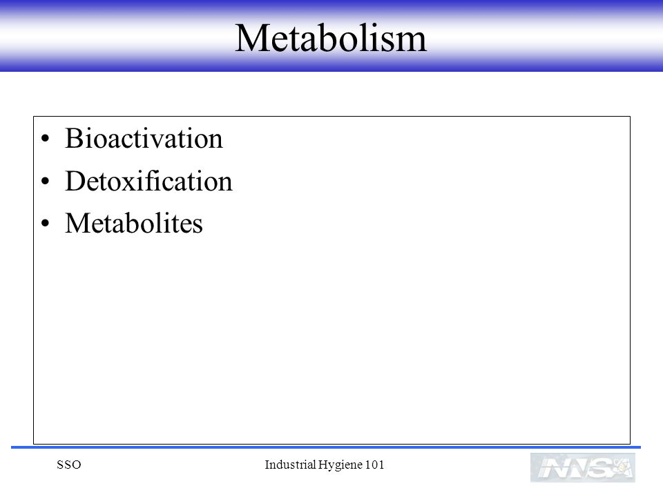 Metabolism Bioactivation Detoxification Metabolites SSO