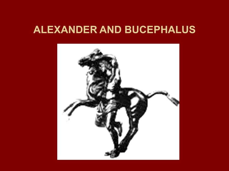 ALEXANDER AND BUCEPHALUS