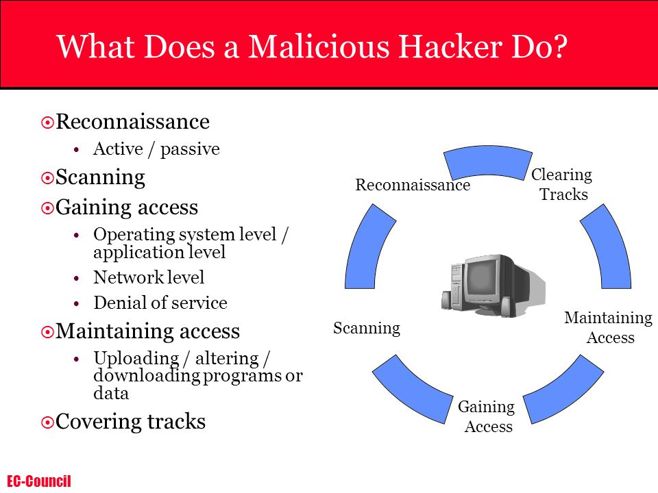 What Does a Malicious Hacker Do