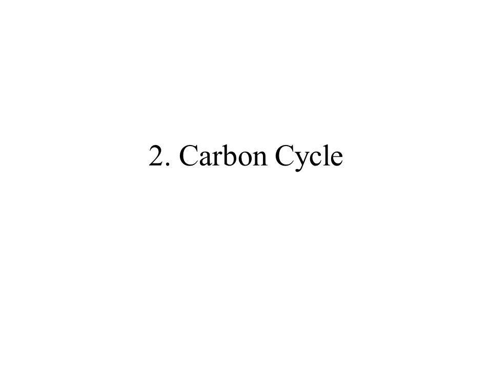 2. Carbon Cycle