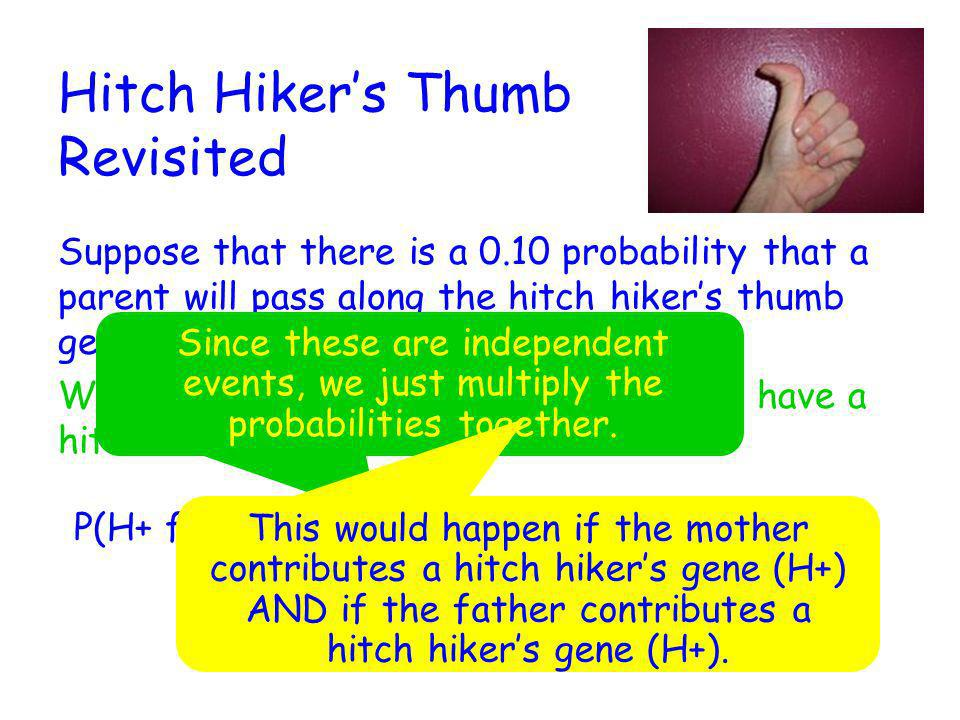 Hitch Hiker's Thumb Revisited