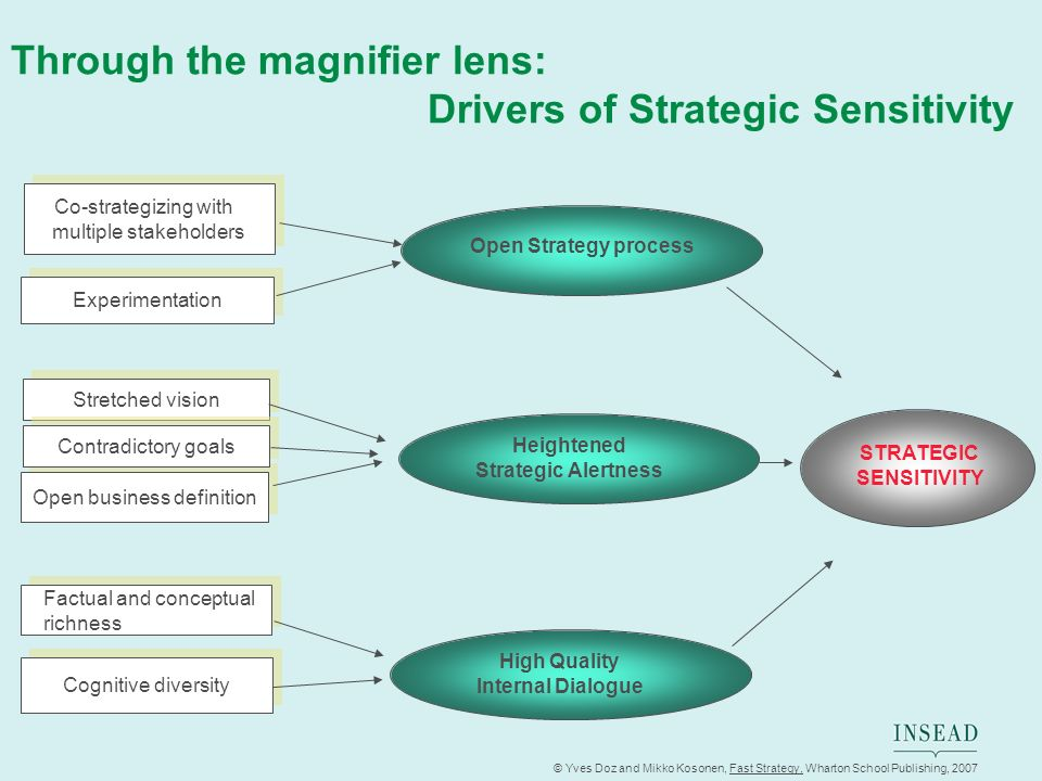 Through the magnifier lens: Drivers of Strategic Sensitivity