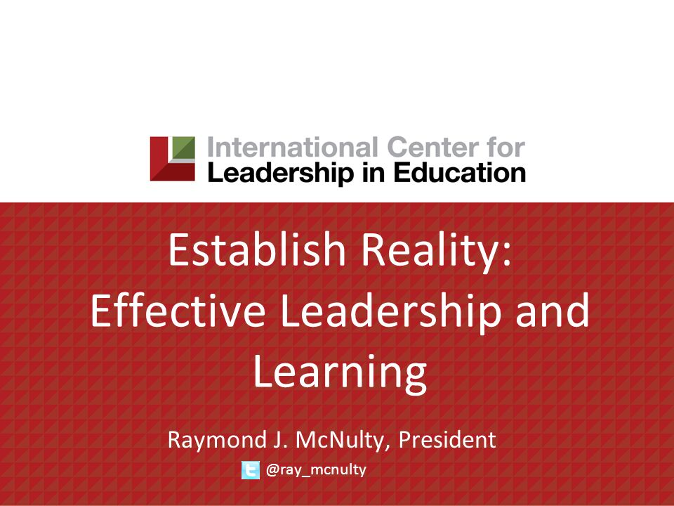 Establish Reality: Effective Leadership and Learning