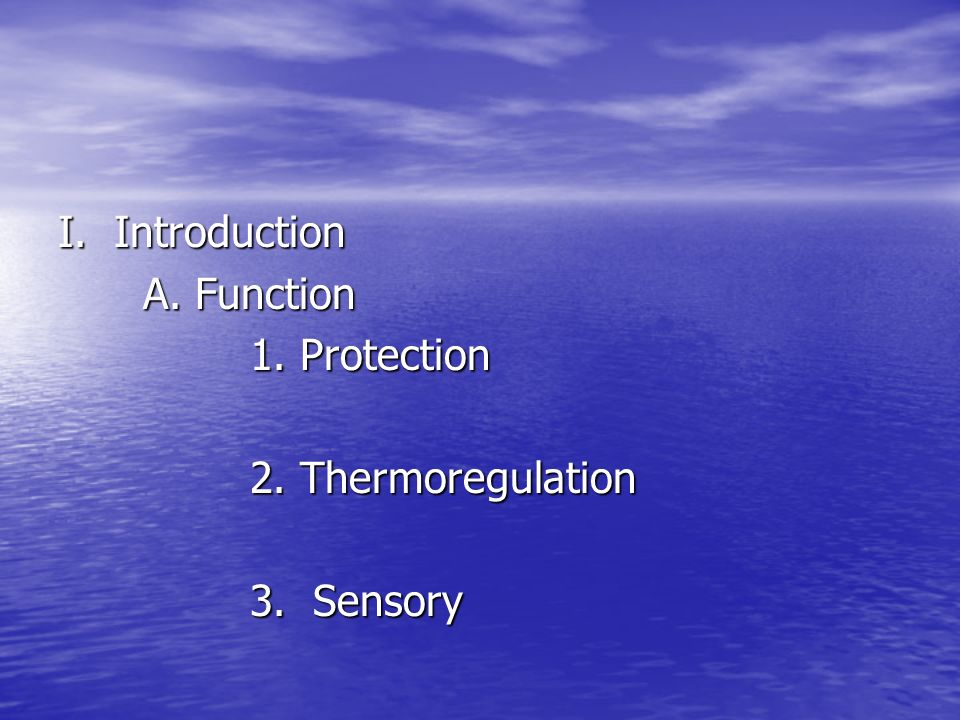 I. Introduction A. Function 1. Protection 2. Thermoregulation 3. Sensory
