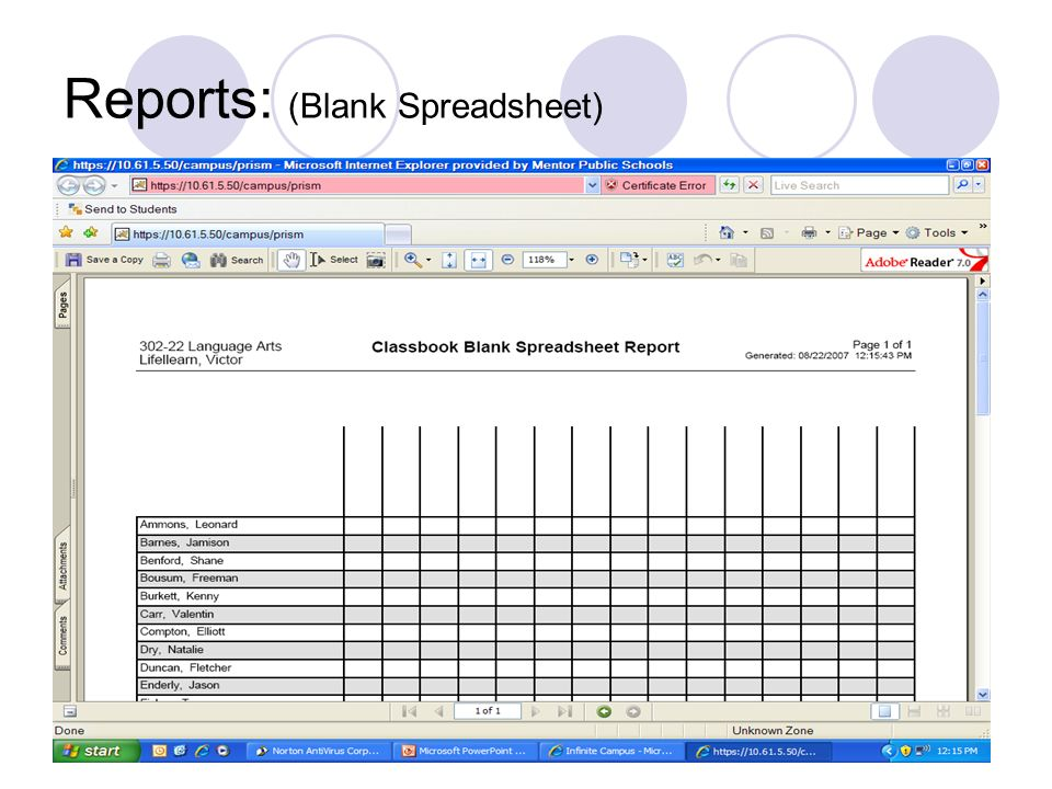 Reports: (Blank Spreadsheet)