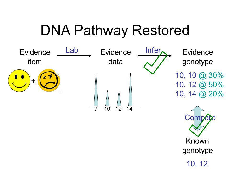 DNA Pathway Restored Lab Infer Evidence item Evidence data