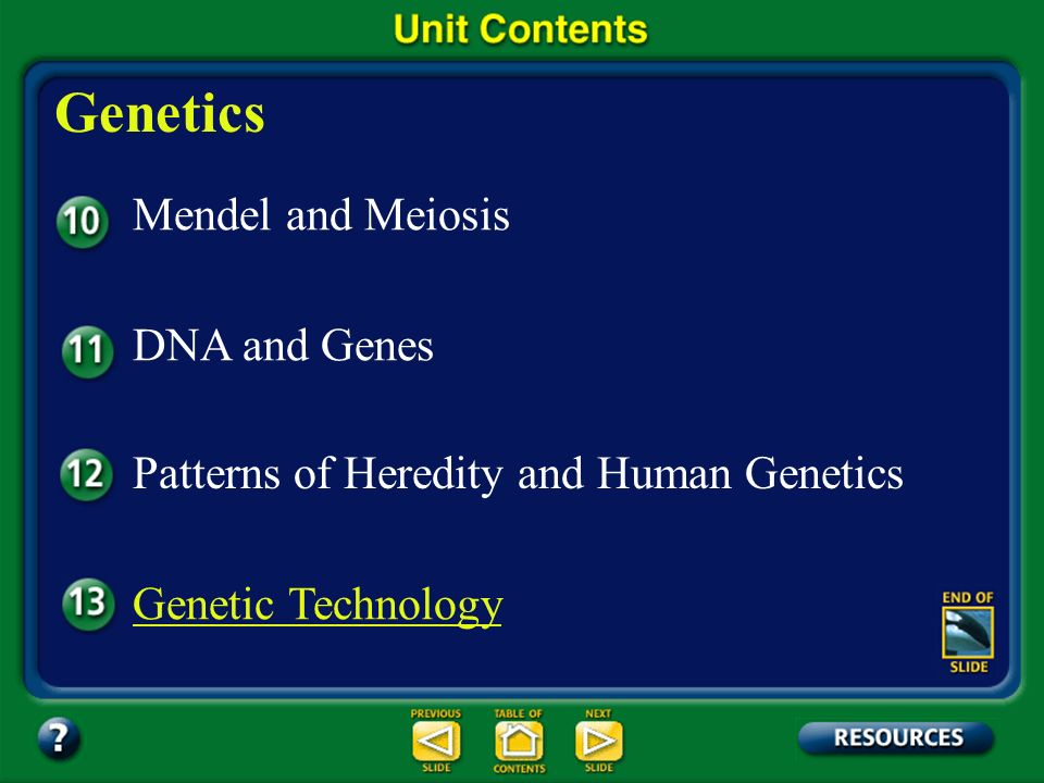 Genetics Mendel and Meiosis DNA and Genes