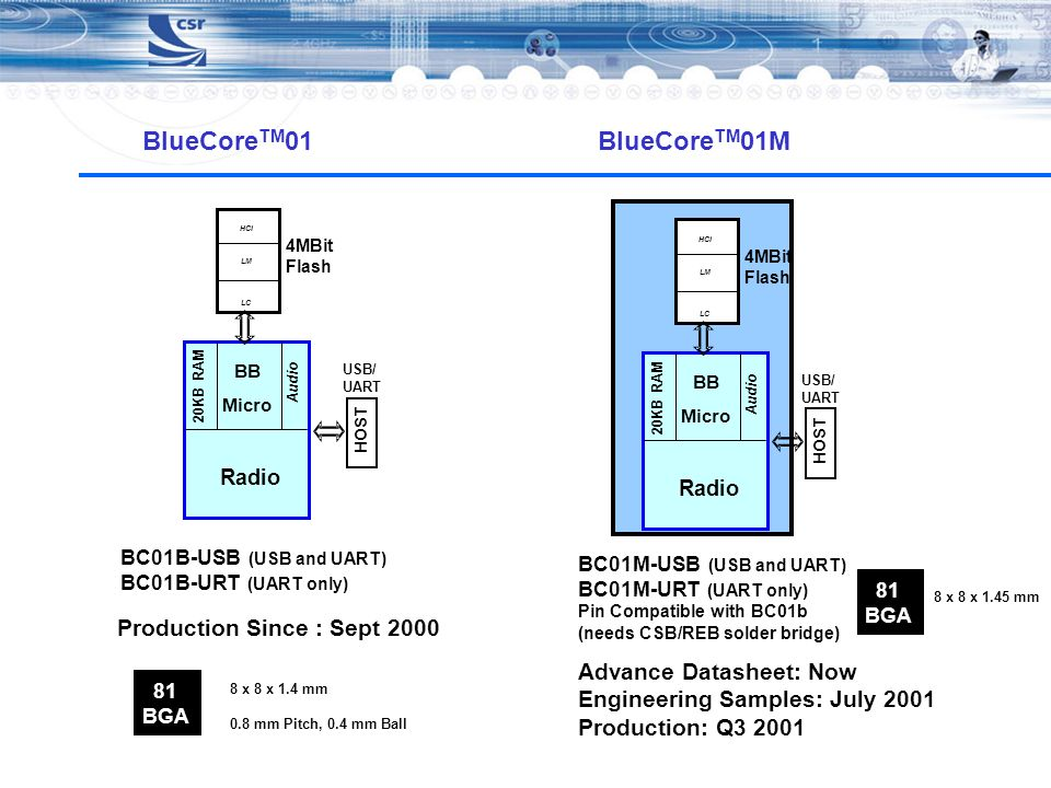 BlueCoreTM01 BlueCoreTM01M Production Since : Sept 2000