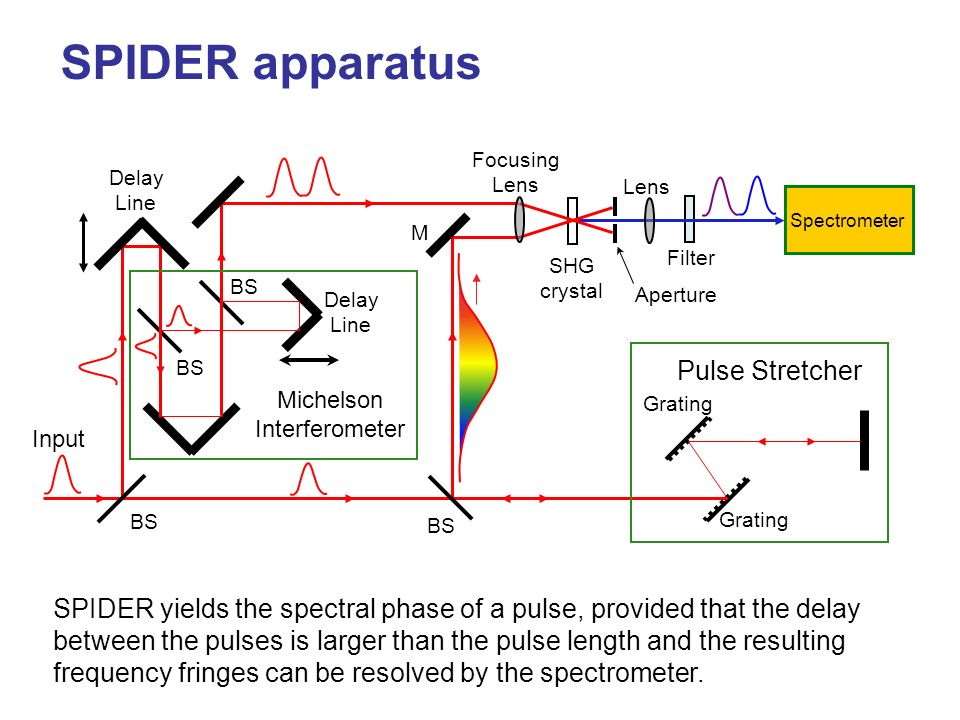 SPIDER apparatus Pulse Stretcher