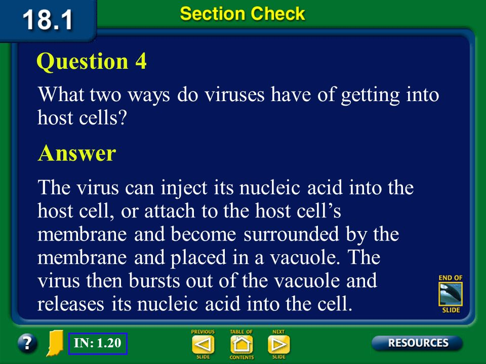 Question 4 What two ways do viruses have of getting into host cells Answer.
