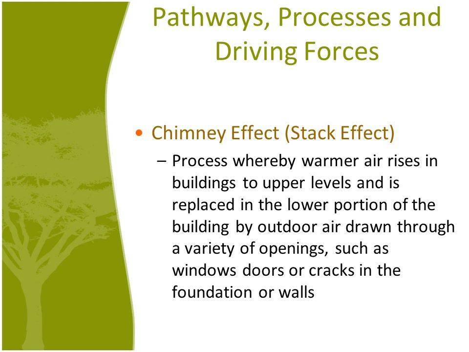 Pathways, Processes and Driving Forces
