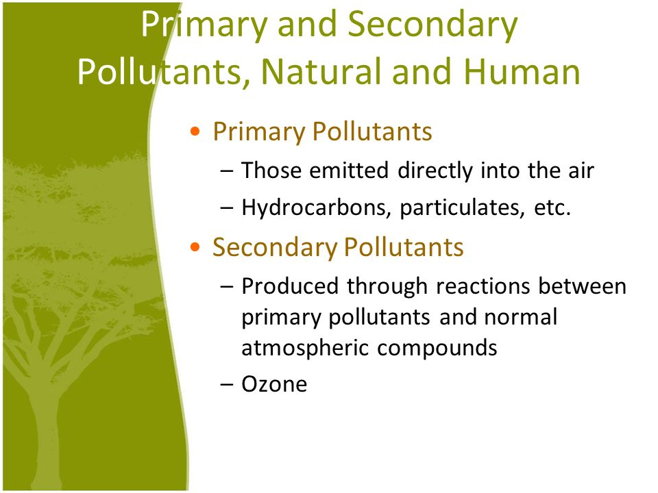 Primary and Secondary Pollutants, Natural and Human