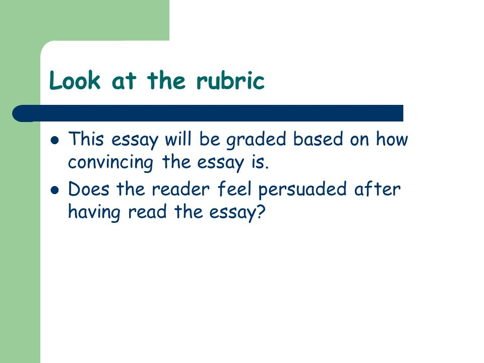 Look at the rubric This essay will be graded based on how convincing the essay is.