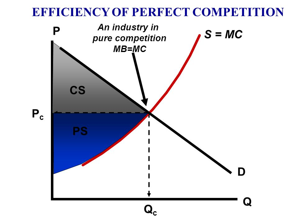 EFFICIENCY OF PERFECT COMPETITION