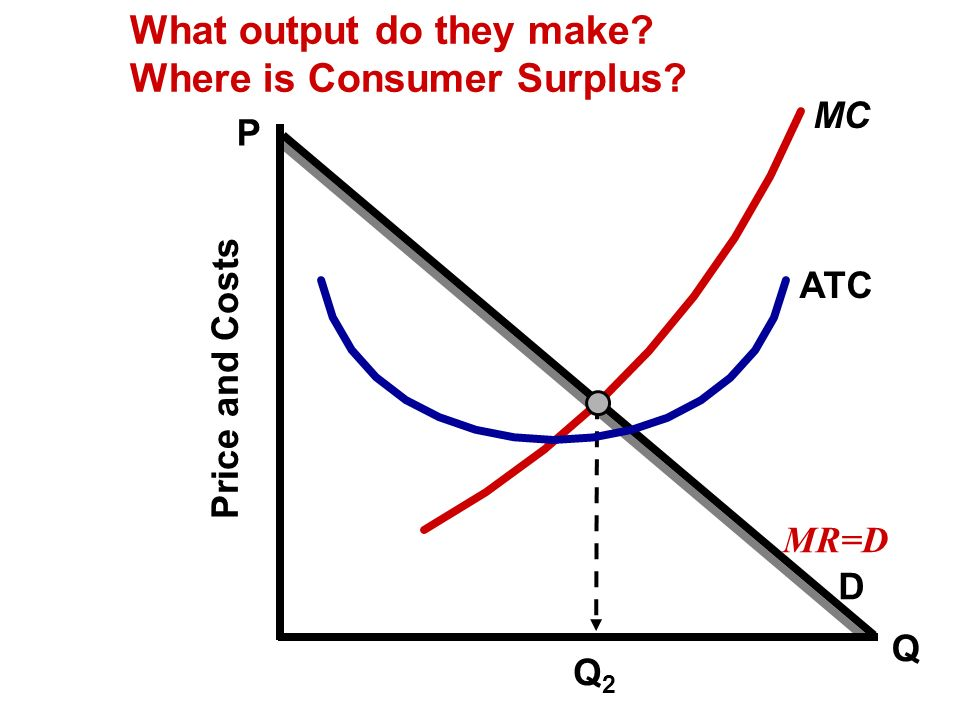 What output do they make Where is Consumer Surplus