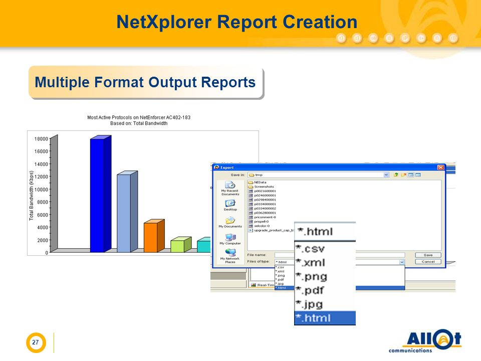 NetXplorer Report Creation