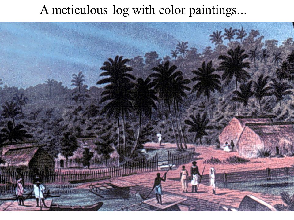 A meticulous log with color paintings...