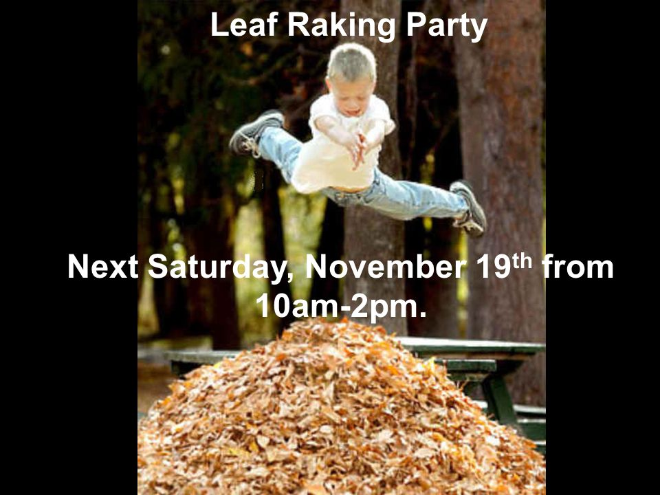 Next Saturday, November 19th from 10am-2pm.
