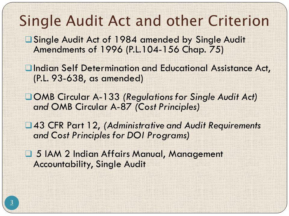 a133 audit