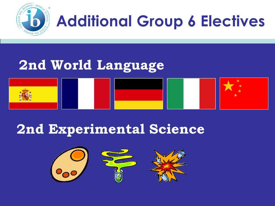 Additional Group 6 Electives