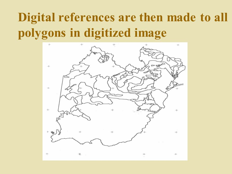 Digital references are then made to all polygons in digitized image