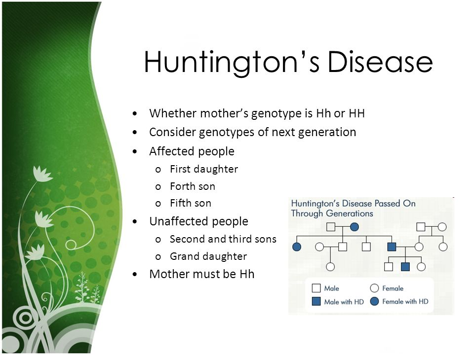 Huntington's Disease Whether mother's genotype is Hh or HH