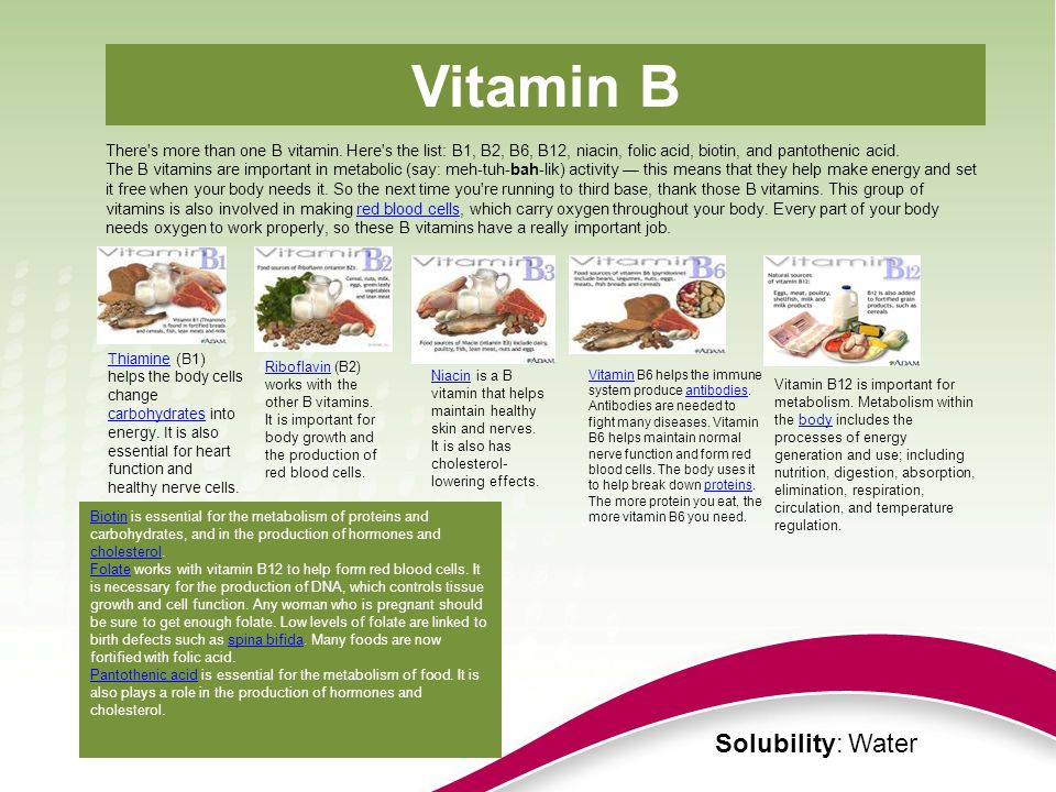Vitamin B Solubility: Water