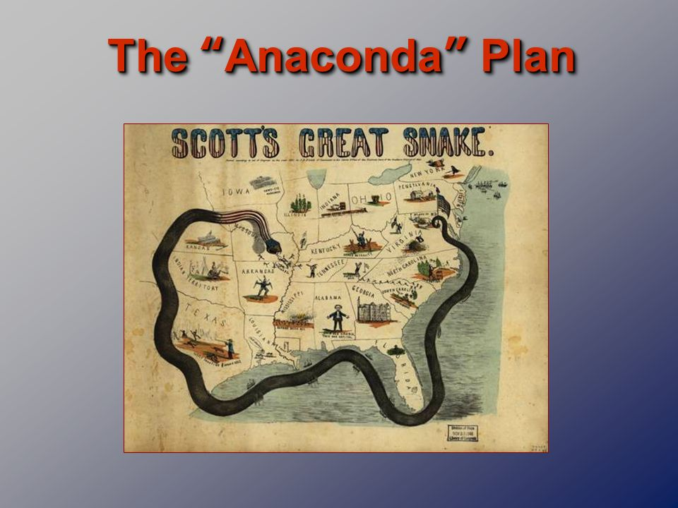 The Anaconda Plan