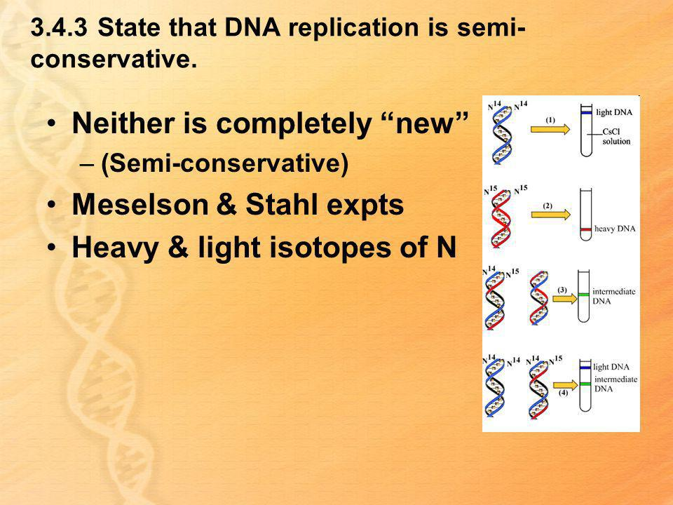 3.4.3 State that DNA replication is semi-conservative.