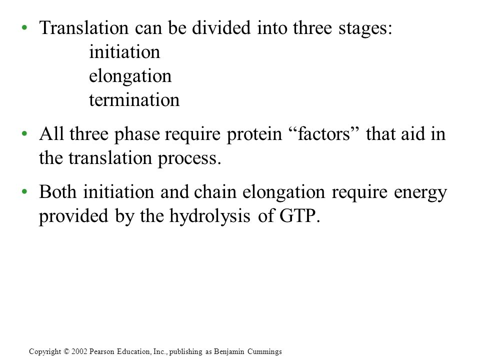 Translation can be divided into three stages: initiation elongation termination