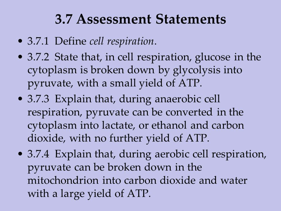 3.7 Assessment Statements
