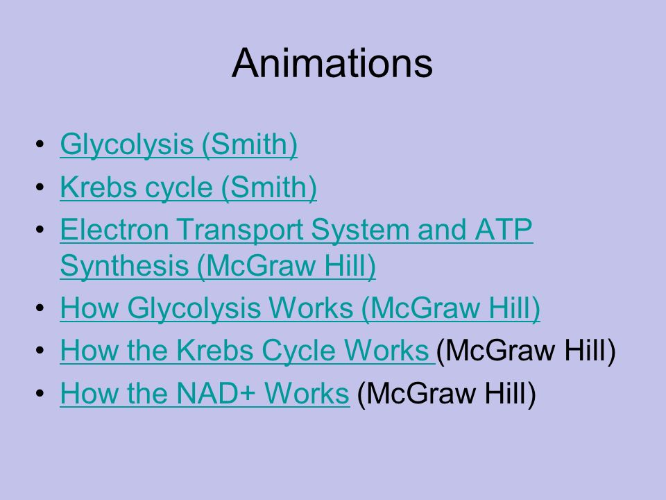 Animations Glycolysis (Smith) Krebs cycle (Smith)