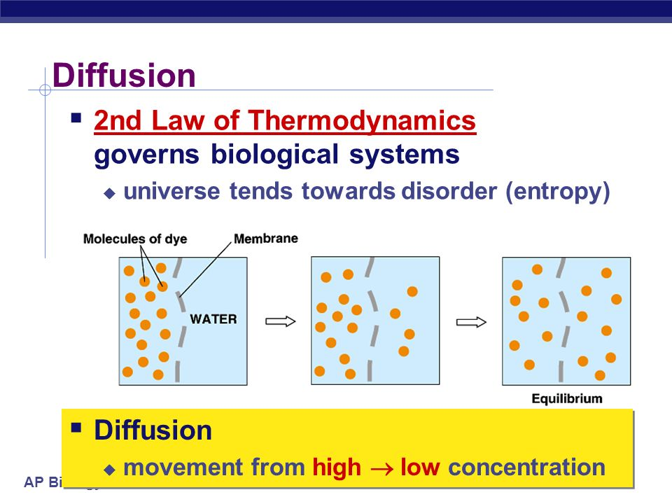 Diffusion 2nd Law of Thermodynamics governs biological systems