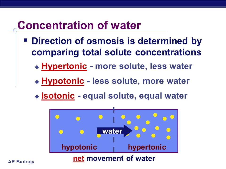 Concentration of water