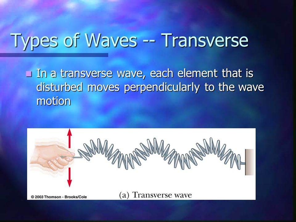 Types of Waves -- Transverse
