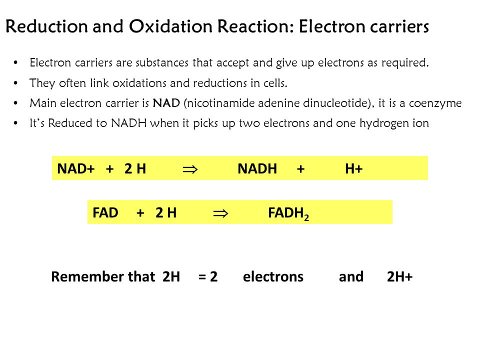 Reduction and Oxidation Reaction: Electron carriers