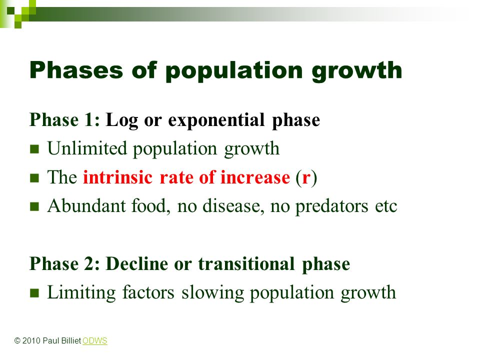 Phases of population growth