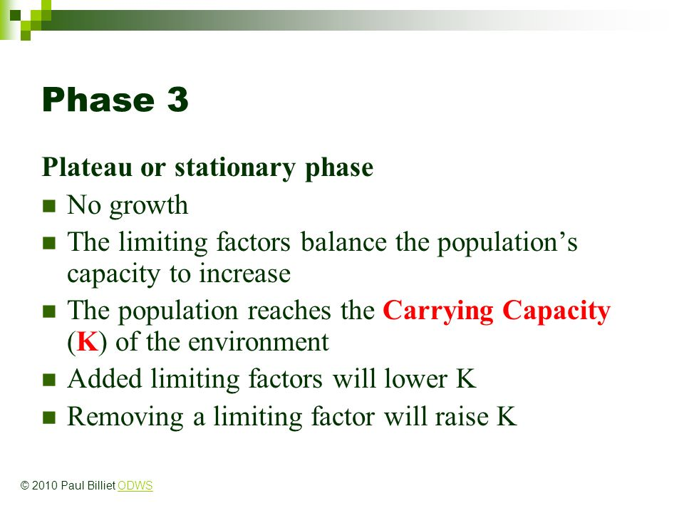 Phase 3 Plateau or stationary phase No growth