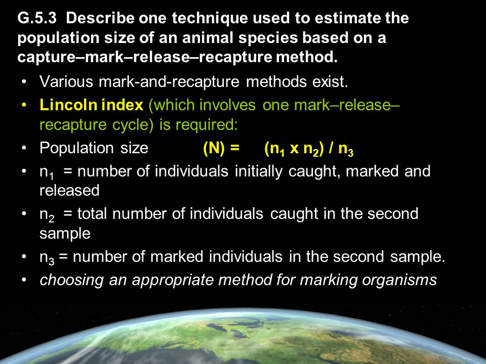 G.5.3 Describe one technique used to estimate the population size of an animal species based on a capture–mark–release–recapture method.